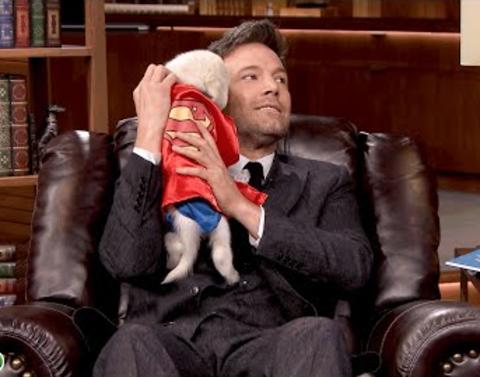 Ben affleck takes pup quiz on the tonight show