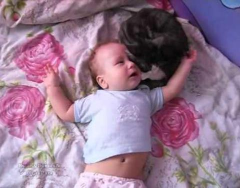 Incredible kitty comforts crying baby