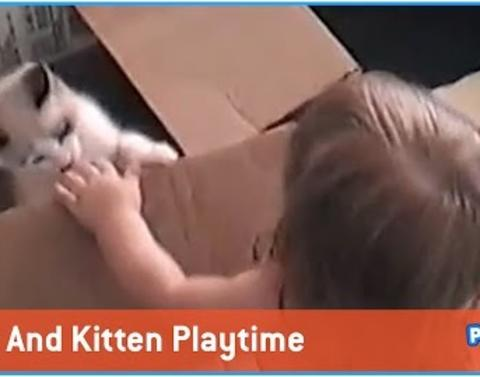Kitten and baby are bffs and its adorable