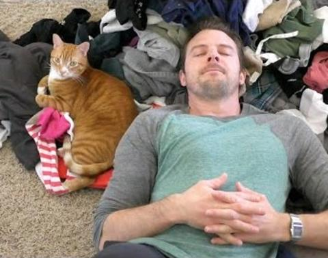 Strange things only cat owners will understand