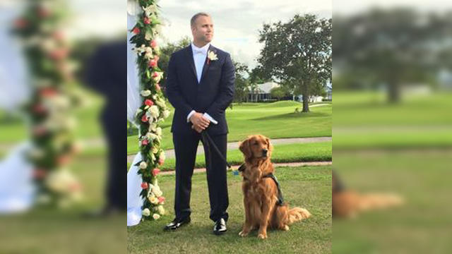 10 Pictures That Prove Dogs Really Are A Mans Best Friend Myfanatic