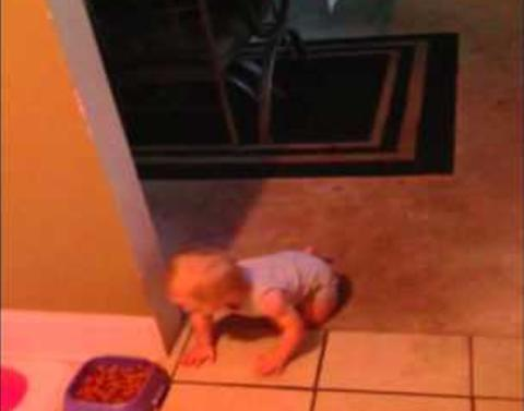 Sneaky kid snatches dog food then makes quick escape